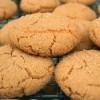 şekerli kurabiye
