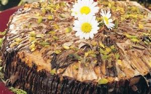 kök pastası